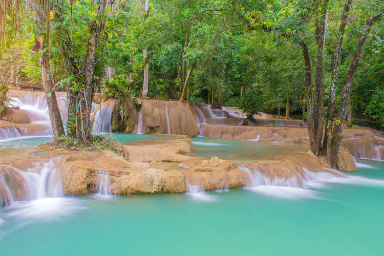 Tree Water Plant Nature Beauty In Nature Tranquility Scenics - Nature No People Waterfront Day Tranquil Scene Land Forest Travel Destinations Architecture Motion Outdoors Waterfall Environment Flowing Water Swimming Pool