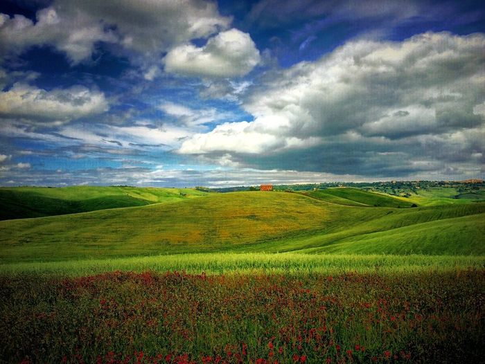 EyeEm Best Shots - Landscape NEM Submissions EyeEm Best Shots IPhoneography WeAreJuxt.com