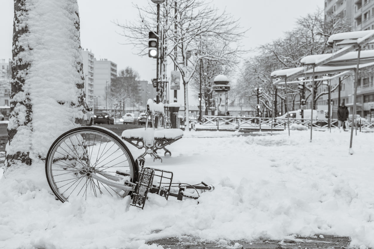 BICYCLE PARKED BY FROZEN BARE TREE