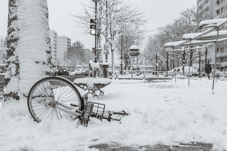 Bicycle parked on snow covered tree