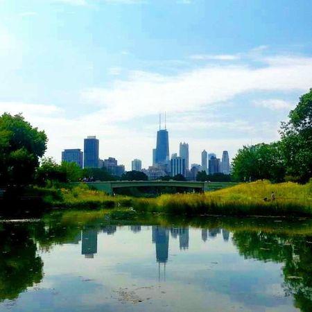 Datview Spectacular Urbanphotography Citylife chicago concretejungle nannylife