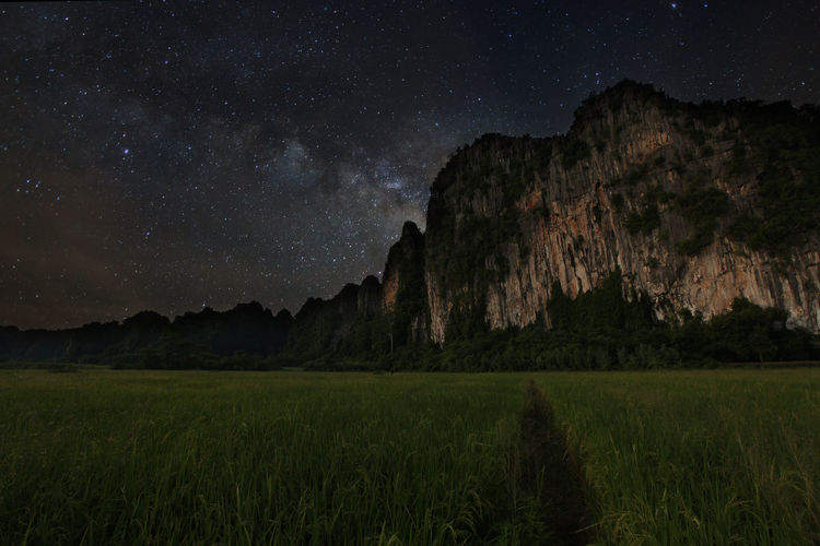 Astronomy Beauty In Nature Constellation Field Galaxy Grass Growth Illuminated Landscape Low Angle View Mountain Nature Night No People Outdoors Scenics Sky Star - Space Star Trail Starry Tranquil Scene Tranquility