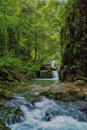Full Frame Backgrounds No People Day Grass Green Color Nature Mountain Lake Mountain Stream, Mountain Creek Eye For Photography Check This Out Rocks And Water Rock Formations Exceptional photographs EyeEm Gallery EyeEm Masterclass Mood Captures Eye Em Nature Lover Tree