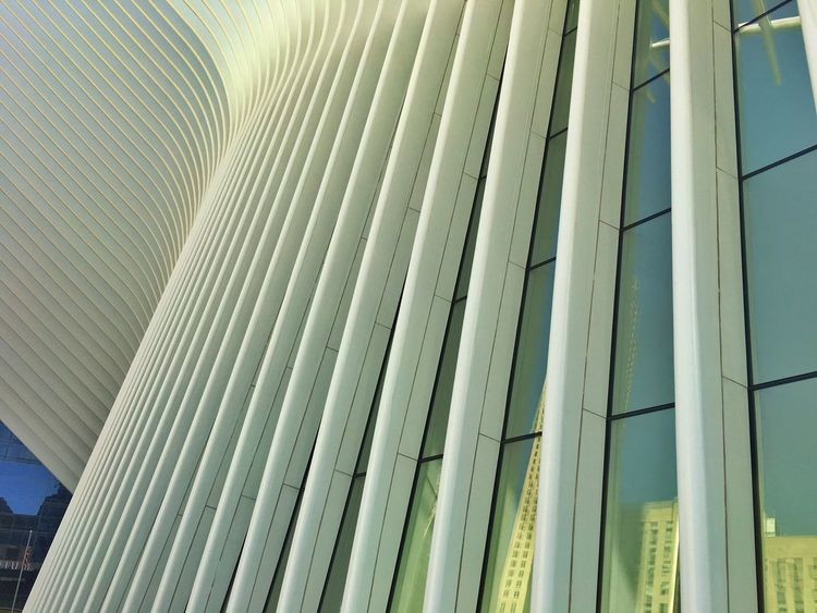 New York New York City Calatrava Calatravaarchitecture World Trade Center Urban Geometry White Ribs Curves Curved Buildings Curved  Oculus NY