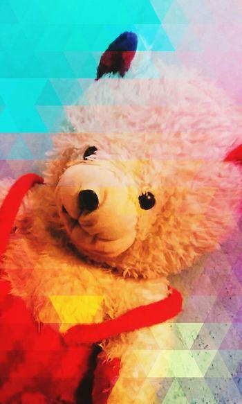 Cute teddy Teddybear Cute♡ Pastel Power @sekharchinta, Hyderabad India