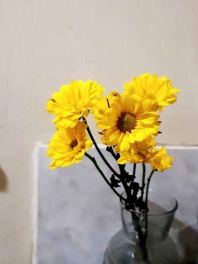 Flowers smile