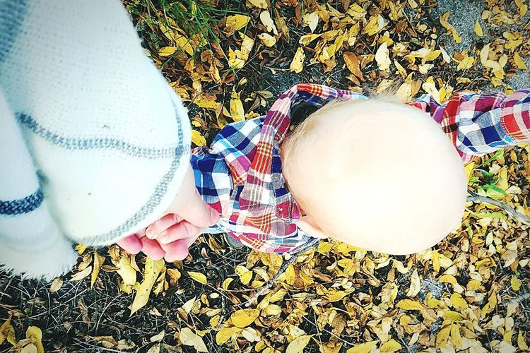 I seriously wish you'd never grow up😩 baby, please just stay this little💙 Leaves Son Autumn Babymodel Singlemom Holding Hands NeverLetGo Multi Colored Textile Low Section Pattern Close-up