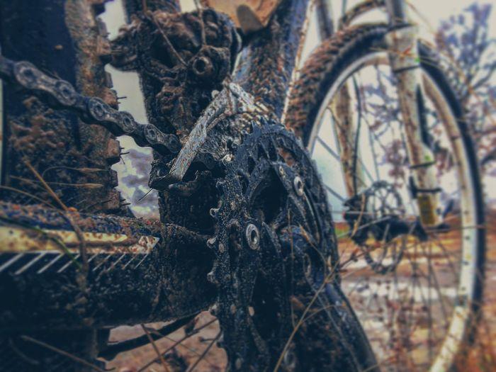 Enduro Bicycle Wheel Outdoors Downhill MTB Roadtrip Road Bicicleta Bycicle Bikelife Biketrip Biketour The Photojournalist - 2016 EyeEm Awards Bisiklet Bikeride Bikelove Bicicle Cylist Cyling Cycle Enjoying Life Wild Photography MTB Biking