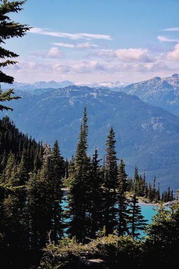 Lake Whistler