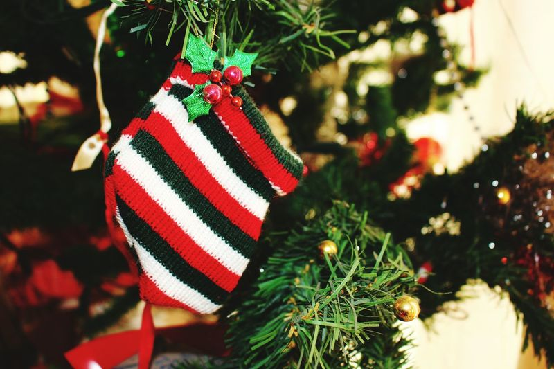 Christmas Around The World Christmas Tree Check This Out Taking Photos Hello World Christmastime Christmas Decorations Christmas Spirit Merry Christmas Christmas Ornaments Gifts Jolly Thankful Jolly Blessed  Photography Moments Eye4photography