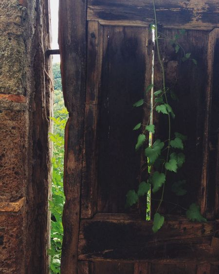 door to nowhere AMPt_community Vscocam Change Your Perspective Calcata