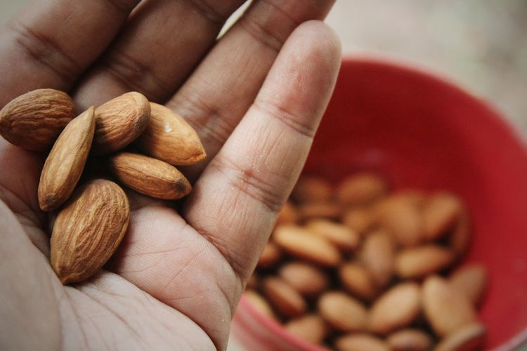 Cropped hand of person holding almonds