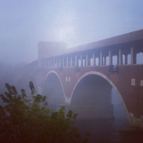 Pavia Bridge Fog Foggy Porcatroiadovesonofinita Nebbia Nebbiadelcazzo Horror Thefog Sonomorta