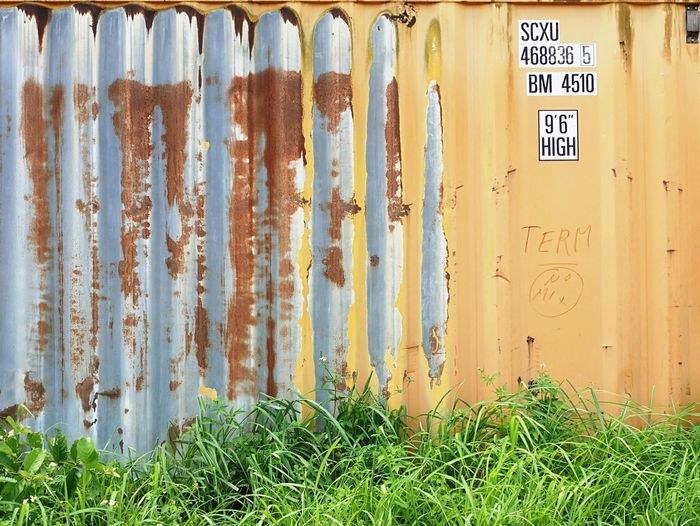 Outdoors Corrugated Iron Weathered Rusty Architecture Grass Contener