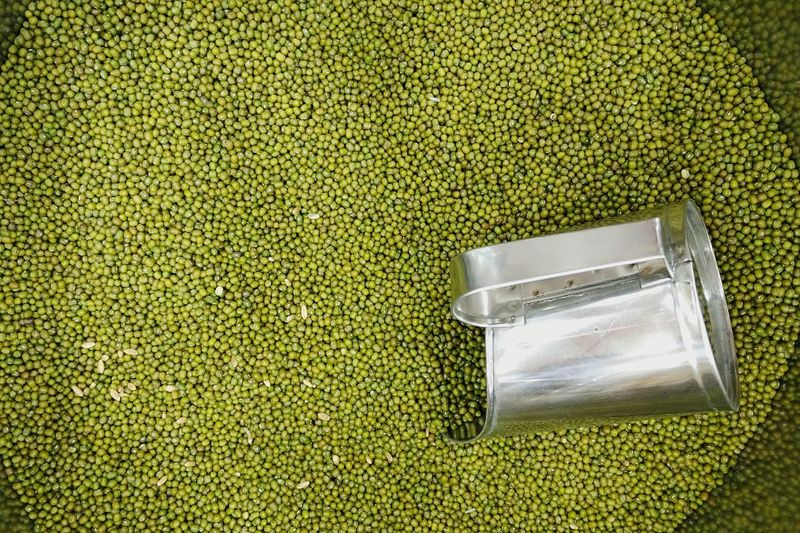 Directly Above View Of Mung Beans In Container At Shop