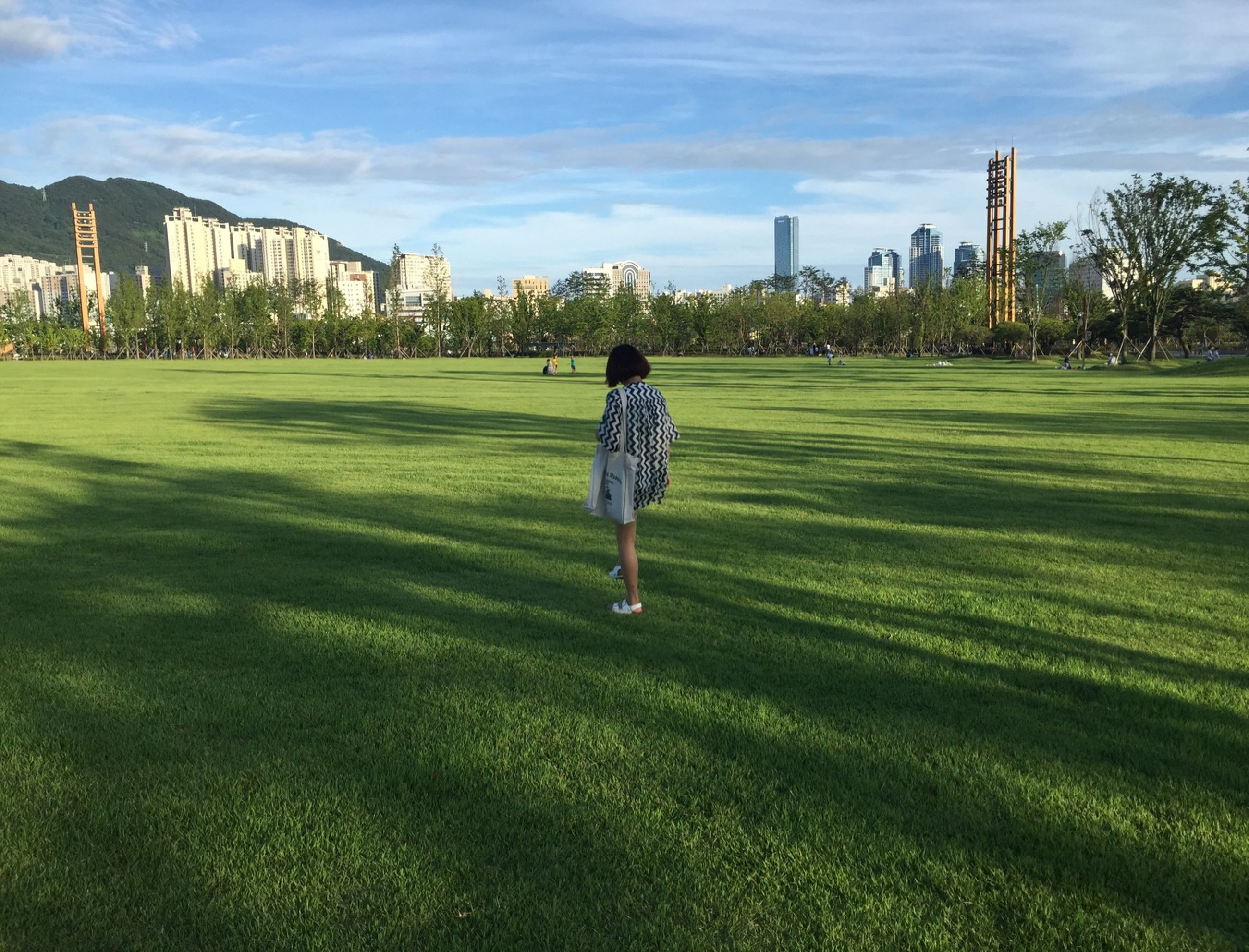 grass, full length, field, lifestyles, casual clothing, leisure activity, green color, grassy, rear view, sky, standing, park - man made space, architecture, building exterior, childhood, built structure, walking, lawn