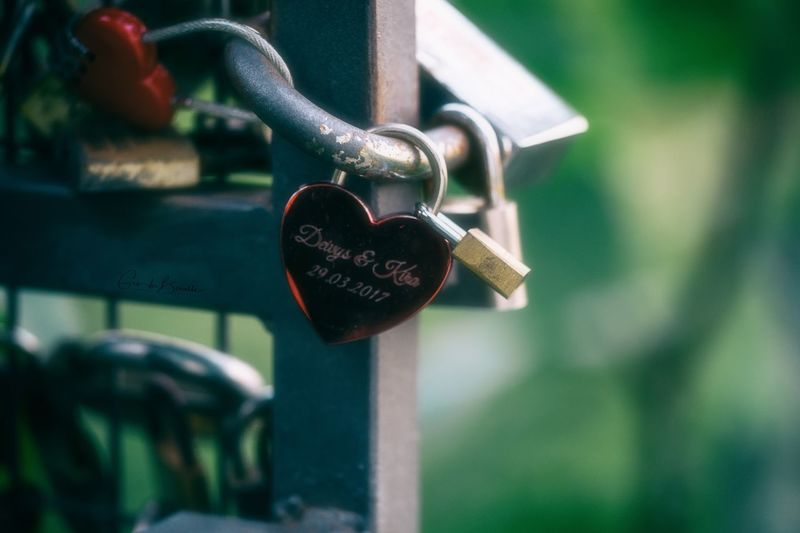 Love engraved Metal Protection Lock Security Safety Close-up Padlock No People Love Hanging Focus On Foreground Positive Emotion Closed Heart Shape Day Outdoors Emotion Green Color Detail Railing