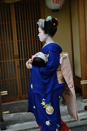 Clothing Women Real People Costume Traditional Clothing Lifestyles One Person