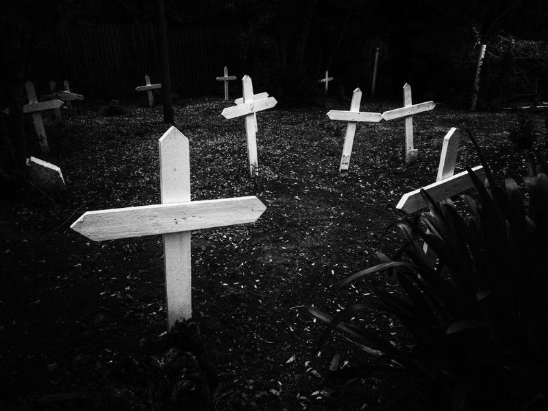Wood Cutters' Graves in the Knysna Forest No People Outdoors Day Black And White Photography MonochromePhotography Black & White Monochrome Photography Whiteblackphotography Blackandwhite Blackandwhite Photography Graves Cross White Crosses White Cross On Grave Graveyard Graveyard Beauty Graveyard Collection Graveyardphotography Gravesite Eyeem South Africa EyeEm Selects Cell Phone Photography Black And White Friday