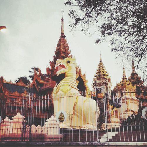 Shwedagon Lion Golden Yangon, Myanmar