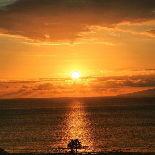 Tenerife Tenerife Palmar Holydays Sunset Ocean Canon700D Colours