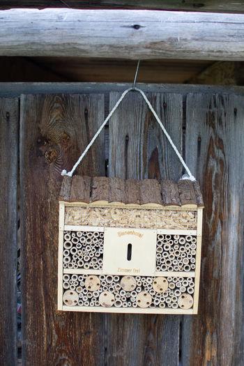 Bienenhotel an Holzwand Bienenhotel Hummel Insektenhotel Bestäuben Biene Biennen Day Hanging Holzwand Honig Hummeln Nature No People Wood überwintern