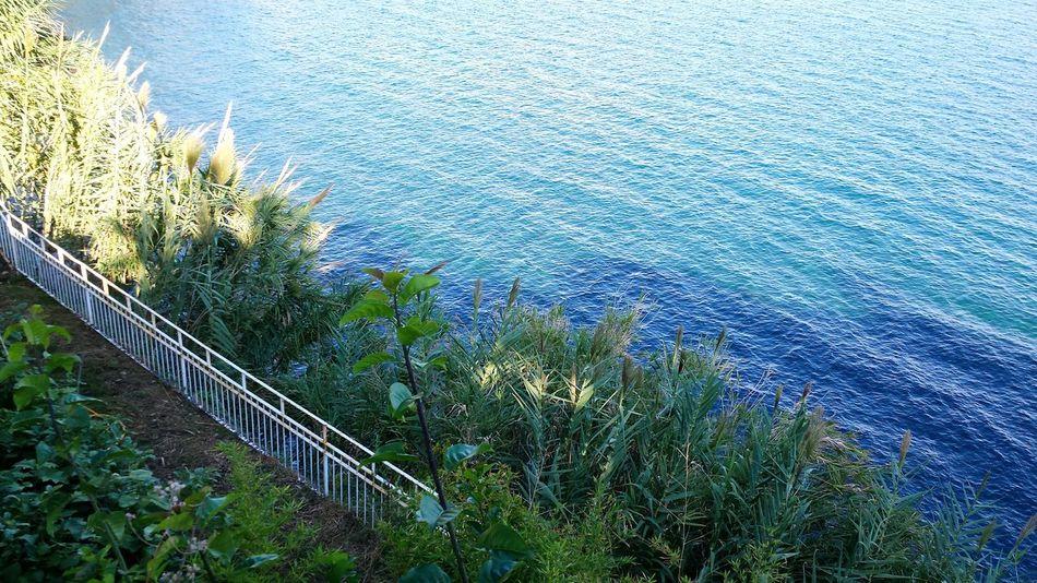 🌿🍃🌊Relaxing Beatiful Sea Nature Photography Nature Sea Naturephotography Enjoying Life Landscape Mare Natura