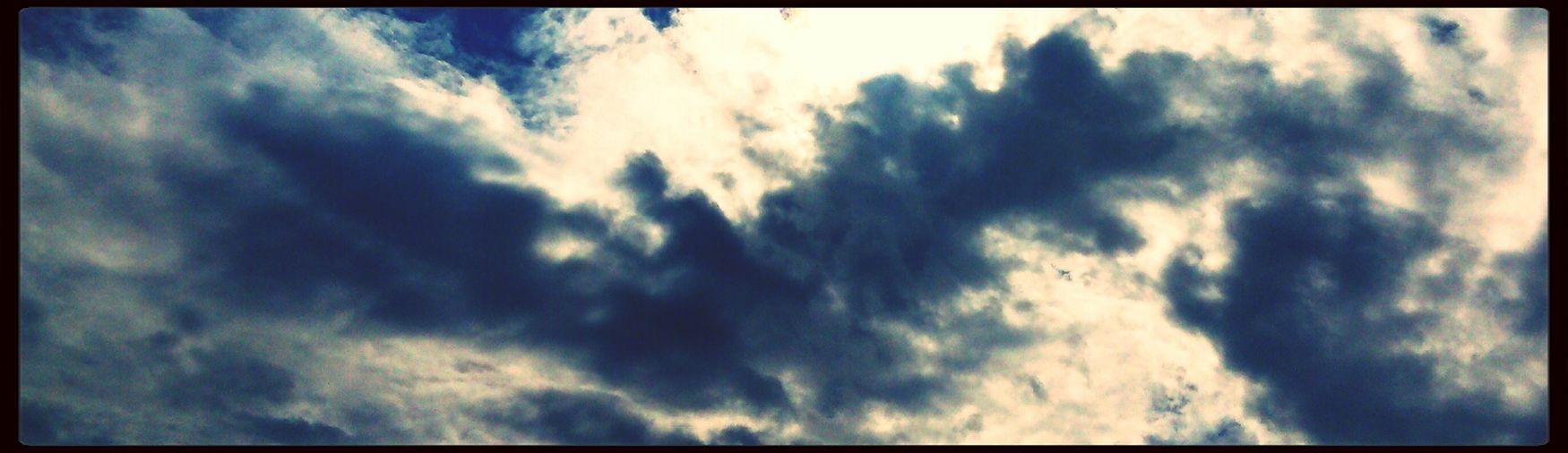 I see a Phoenix Rising. Sky Cinema Snapseed