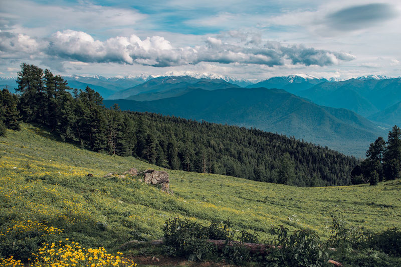 Beautiful scenery of colorful altai mountains, flowers and partly clouded sky.