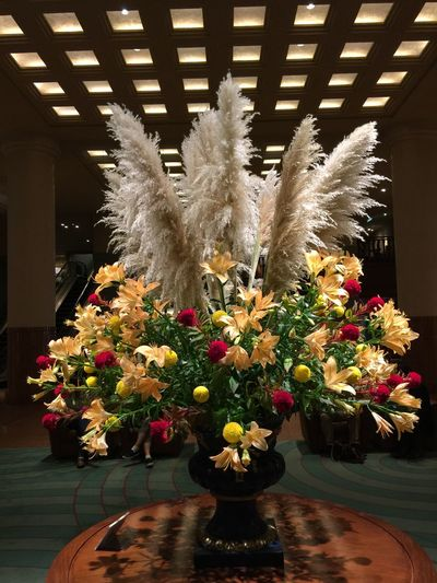Lilium Maculatum Beautiful Flowers Kyoto Hotel Flower Collection Flowerarrangement Autumn Yellow Flower Fall Flower Arrangement