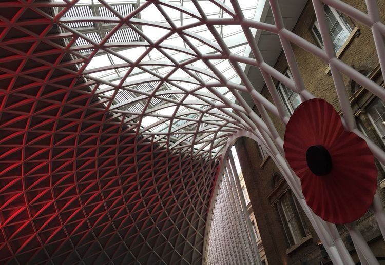Low Angle View Ceiling Built Structure Architecture Red Pattern Railway Station Poppy Armistice Day Remembrance Day British Legion