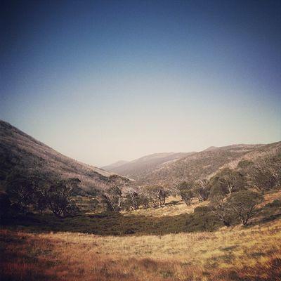 The Australian Alps. #roadtrip Roadtrip Lachlanpayneawesomeamazingphotosbestinstagramereverfollowmenow Payneroadtrip