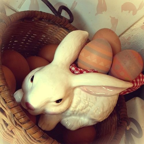 Easter, right? ???❓Noidea Whitepeopleproblems Bored Lel sunday happyeaster easterbunny eggs