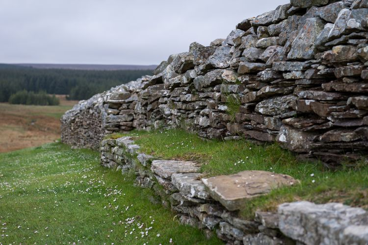 Camster Cairns Scotland Built Structure Stones Caithness Ancient Ruins Highlands Scotland Historic Site Camster Cairns Cairns Historic History Green Color Sky No People Grass Scenics - Nature Day Land Solid Rock Landscape Field