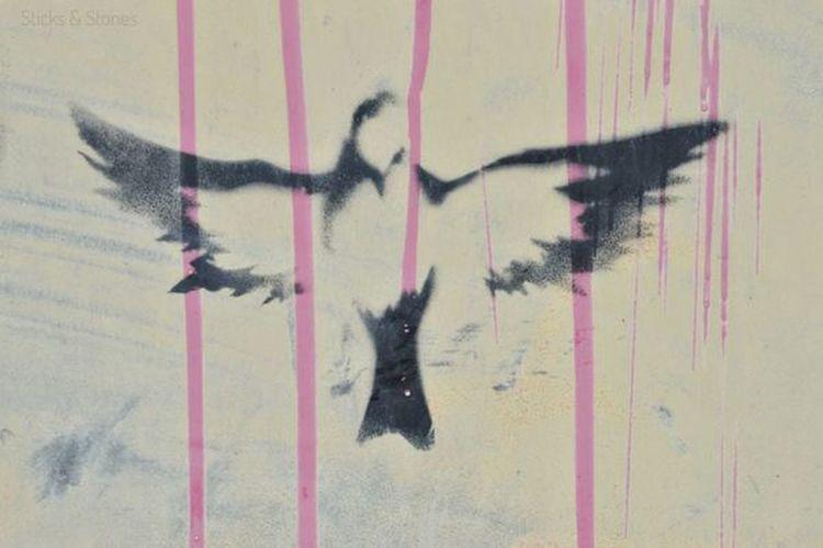 Freedom Chaser Bird Freedom Dripping Close-up Street Art Spray Paint Graffiti Paint