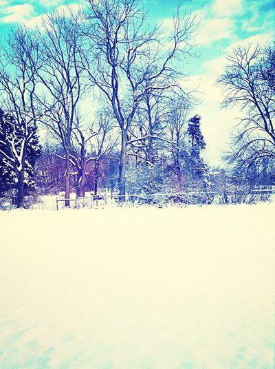 Just A Little Bit Of Snow
