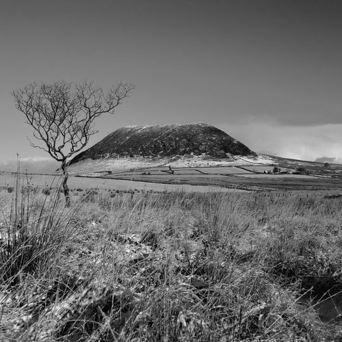 Slemish in a