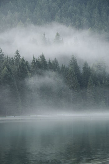 mornings Landscape_Collection Morning Nature Fog Italy Lake Lake View Landscape Mist Mood Mountain Water