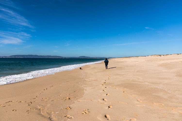 Rear view of woman walking at beach against blue sky during sunny day