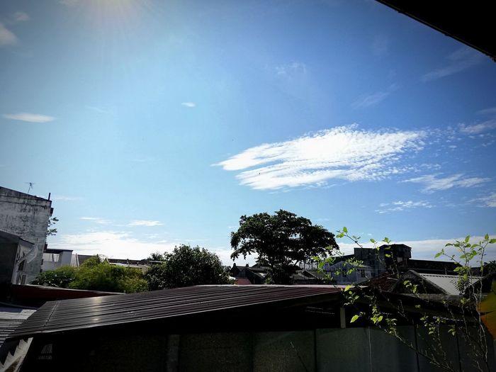 EyeEmNewHere Alorsetar Malaysia Truly Asia Malaysia Tree Spraying Water Sky Cloud - Sky Street Art Residential Structure