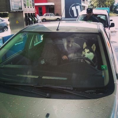 Driver?