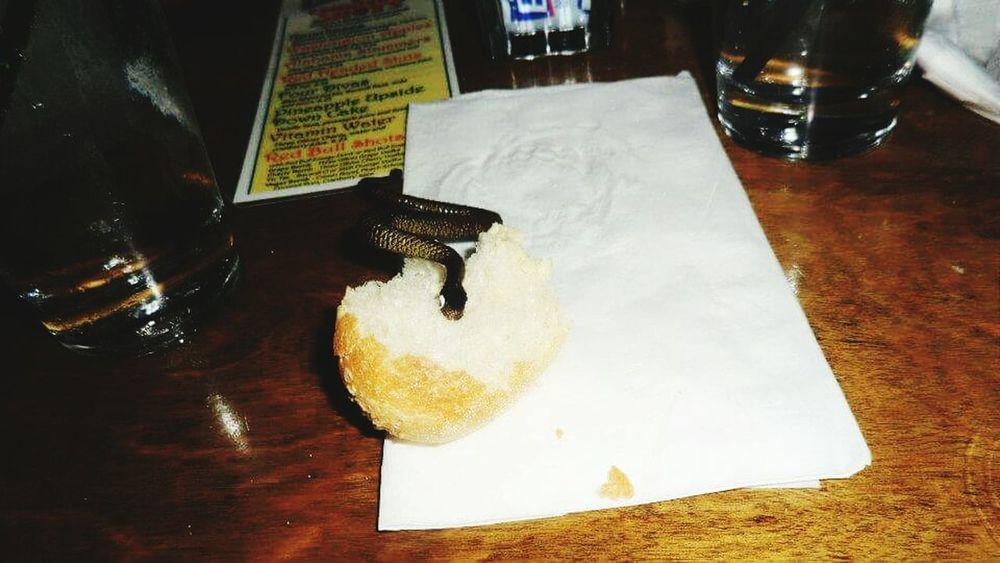 Indoors  Bar Snake Snakebite  Dinner Roll White Tablecloth Rehearsal Dinner Fake Snake