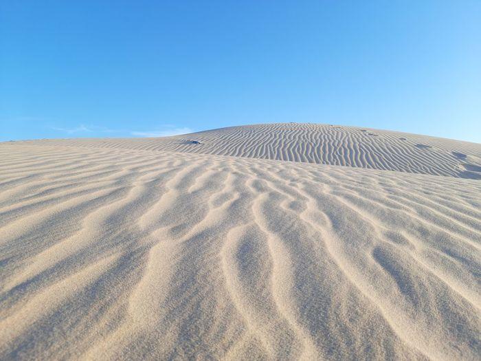 Pattern waves in desert of algeria
