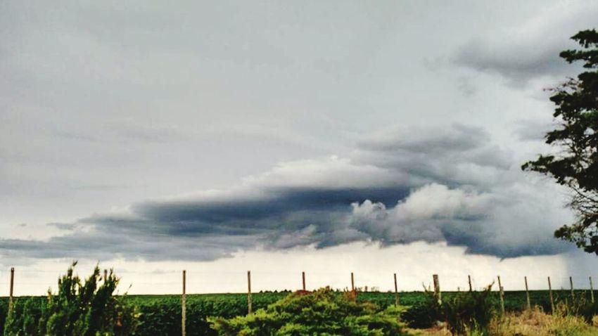 nature argentina photography photography nature_collection photography Rain Motorolamotox2