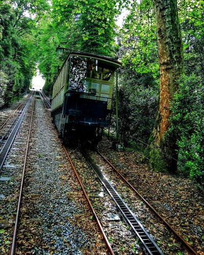 Oldest working water counterweight funicular in the world Bomjesus Water Funicular Funicular Railway Old Art Landscape