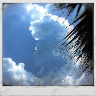 NEM Submissions NEM Clouds NEM 2013 Frame It!