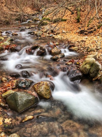 Creek at Lake Chelan State park Long Exposure Water Waterfall Motion Nature Blurred Motion No People Rock - Object River Beauty In Nature Scenics Tranquil Scene Outdoors Tranquility Day Forest