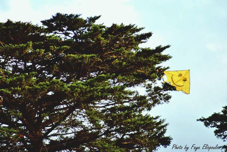 First Eyeem Photo EyeEmNewHere Kite Smile :) Percecttiming Paint The Town Yellow