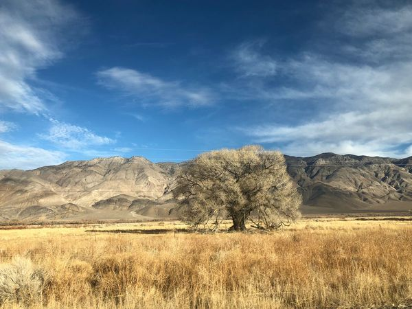 Landscape Nature Day Beauty In Nature Geology Sky Shades Of Winter Scenics Mountain Outdoors Tranquil Scene Cloud - Sky Grass Tree No People Tranquility