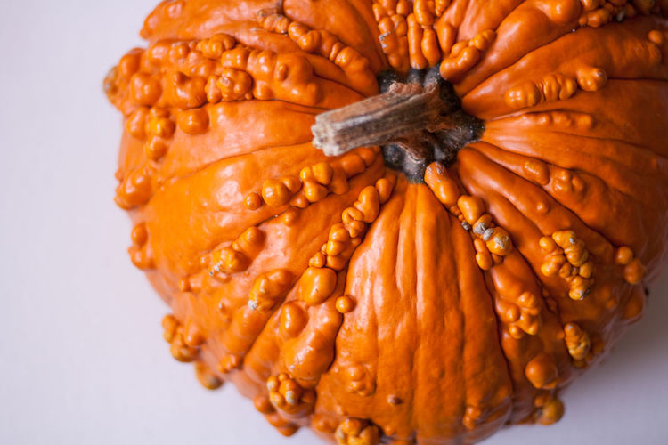 Close-up of pumpkin over white background
